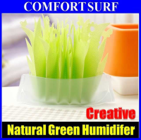 Creative Non-electric Eco-friendly GREEN Natural Evaporating Transforming Humidifier
